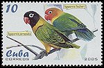 Cl: Fischer's Lovebird (Agapornis fischeri)(Out of range)  SG 4819 (2005)  [3/59]