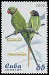 Cl: Rose-ringed Parakeet (Psittacula krameri)(Out of range)  SG 4821 (2005)  [3/59]