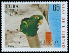 Cl: Cuban Parakeet (Aratinga euops)(Endemic or near-endemic)  SG 5217 (2008)  [4/55]