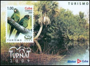 Cl: Cuban Parakeet (Aratinga euops) <<Catey>> (Endemic or near-endemic)  SG 5433 (2009)  [6/28]
