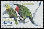 Cl: Cuban Parrot (Amazona leucocephala)(Endemic or near-endemic)  SG 4818 (2005)  [3/59]
