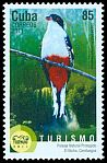 Cl: Cuban Trogon (Priotelus temnurus)(Endemic or near-endemic)  new (2011)  [11/2]