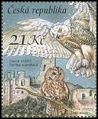 Cl: Snowy Owl (Bubo scandiaca) new (2015)  [10/4]