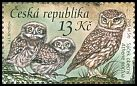 Cl: Little Owl (Athene noctua) new (2015)  [10/4]