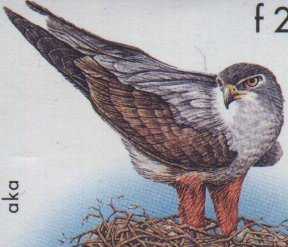 Detail of hawk on 225F issued in 1998