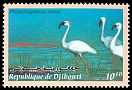 Cl: Lesser Flamingo (Phoenicopterus minor) SG 1250 (2000) 55
