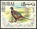 Cl: Ring-necked Pheasant (Phasianus colchicus)(Out of range)  SG 310 (1968) 250 [4/6]