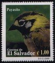 Cl: White-eared Ground-Sparrow (Melozone leucotis) <<Payasito>>  SG 2522 (2000) 35 [1/3]