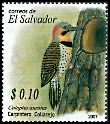 Cl: Northern Flicker (Colaptes auratus) SG 2802 (2007) 20 [4/39]