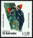 Cl: Lineated Woodpecker (Dryocopus lineatus) <<Carpintero grande>>  SG 2500 (1999) 80