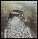 Cl: Northern Goshawk (Accipiter gentilis) <<Kanakull>>  SG 484 (2005)  [3/47]