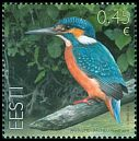 Cl: Common Kingfisher (Alcedo atthis) <<J&auml;&auml;lind>>  SG 738 (2014)