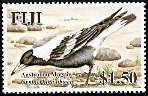 Cl: Australasian Magpie (Gymnorhina tibicen)(Introduced)  SG 1361 (2007)  [4/19]