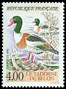Cl: Common Shelduck (Tadorna tadorna) <<Tadorne de Belon>>  SG 3110 (1993) 160