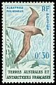 Cl: Light-mantled Albatross (Phoebetria palpebrata) <<Albatros fuligineux>>  SG 2 (1956) 55
