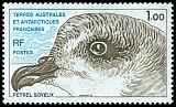 French Southern and Antarctic Territory <<Petrel soyeux>> SG 139 (1980)