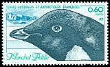 Cl: Adelie Penguin (Pygoscelis adeliae) <<Manchot adelie>> (Repeat for this country)  SG 150 (1981) 170