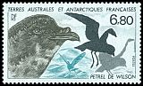 French Southern and Antarctic Territory <<Petrel de Wilson>> SG 242 (1987)