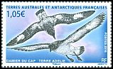 Cl: Cape Petrel (Daption capense)(Repeat for this country)  SG 775c (2016)  [10/11]