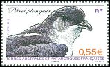 Cl: Common Diving-Petrel (Pelecanoides urinatrix) <<Petrel plongeur>> (Repeat for this country)  SG 615d (2009)  [6/7]