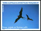Cl: Great Frigatebird (Fregata minor) <<Fregate du Pacifique>> (Repeat for this country)  SG 621a (2009)