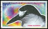 French Southern and Antarctic Territory <<Sterne fuligineuse>> SG 611a (2008)