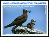 French Southern and Antarctic Territory <<Noddi brun>> SG 621i (2009)