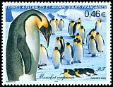 French Southern and Antarctic Territory <<Manchot empereur>> SG 498 (2003)
