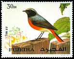 Cl: Common Redstart (Phoenicurus phoenicurus)(not catalogued)  (1972)