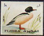 Fujeira not catalogued (1972)