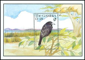 Cl: White-billed Buffalo-Weaver (Bubalornis albirostris) SG 1155b (1991) 500