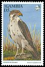 Cl: Augur Buzzard (Buteo augur)(Out of range)  SG 1504 (1993) 275