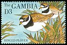 Cl: Common Ringed Plover (Charadrius hiaticula) SG 1978 (1995) 80