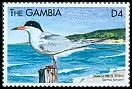 Cl: Forster's Tern (Sterna forsteri)(Out of range and no other stamp)  SG 3202 (1999) 80