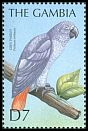 Cl: Grey Parrot (Psittacus erithacus)(Out of range)  SG 3750 (2000) 200