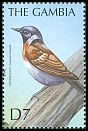 Cl: African Stonechat (Saxicola torquata)(Out of range)  SG 3758 (2000)