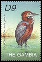 Cl: Goliath Heron (Ardea goliath) SG 4375b (2002) 240 [5/60]