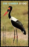 Cl: Saddle-billed Stork (Ephippiorhynchus senegalensis)(Repeat for this country)  new (2019)