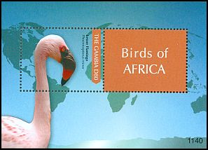 Cl: Lesser Flamingo (Phoenicopterus minor) SG 5457 (2011) 300 [7/38]
