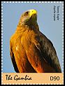 Cl: Tawny Eagle (Aquila rapax) new (2018)