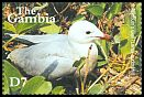 Cl: Audouin's Gull (Larus audouinii)(Out of range)  SG 4166 (2001) 225