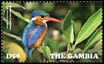 Cl: Malachite Kingfisher (Alcedo cristata)(Repeat for this country)  new (2015)