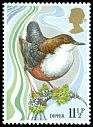 Cl: White-throated Dipper (Cinclus cinclus) SG 1110 (1980) 15