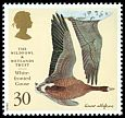Cl: Greater White-fronted Goose (Anser albifrons) SG 1917 (1996) 80