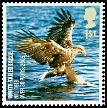 Cl: White-tailed Eagle (Haliaeetus albicilla) SG 2764 (2007) 100 [4/24]