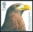 Cl: White-tailed Eagle (Haliaeetus albicilla)(Repeat for this country)  SG 4200 (2019)  [11/56]