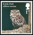 Cl: Little Owl (Athene noctua) SG 4083 (2018) 100 [11/41]