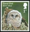 Cl: Tawny Owl (Strix aluco)(Repeat for this country)  SG 4089 (2018) 100 [11/41]