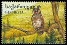 Cl: Northern Long-eared Owl (Asio otus) SG 174 (1996) 60
