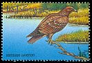Cl: Greater Spotted Eagle (Aquila clanga)(Repeat for this country)  SG 177 (1996) 60